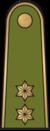 Antpetis sausumos 11 vyresnysis leitenantas.png