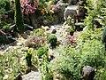 Arboretum - panoramio (1).jpg