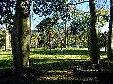 Arbres als jardins de vivers de val ncia jpg for Jardines del real valencia