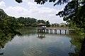 Ashinobe Pond in Okazaki City Higashi Park.jpg