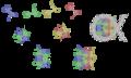 Assemblaggio nucleosoma.png