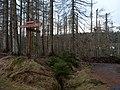 At Königskruger Planweg 57.jpg