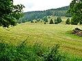 Ausblick vom Wanderweg vom Schluchsee zum Feldberg - panoramio.jpg