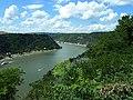 Aussicht von der Loreley - panoramio.jpg