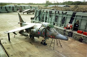 No. 1417 Flight RAF - Foxy-Golf (Foxtrot Golf) hide in 1990