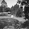 BUGA 1957 Köln Bild19.jpg