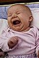 Baby yelling.jpg