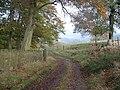 Back Lane - geograph.org.uk - 78350.jpg
