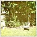 Backyard quiet. - Flickr - pinemikey.jpg