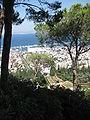 Bahá'í Terraces IMG 6626.jpg