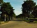 Balikpapan by bloesafir - panoramio.jpg
