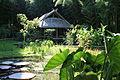 Bambouseraie de Prafrance 20150720 06.jpg