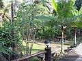 Ban Pong, Hang Dong District, Chiang Mai, Thailand - panoramio (4).jpg