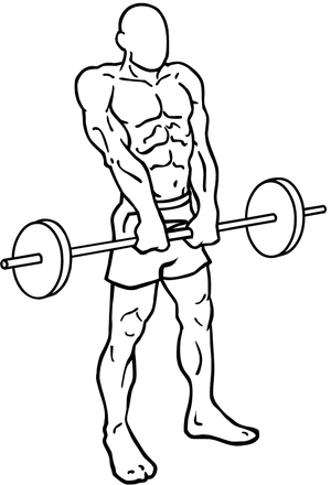 Barbell-shrugs-2.png