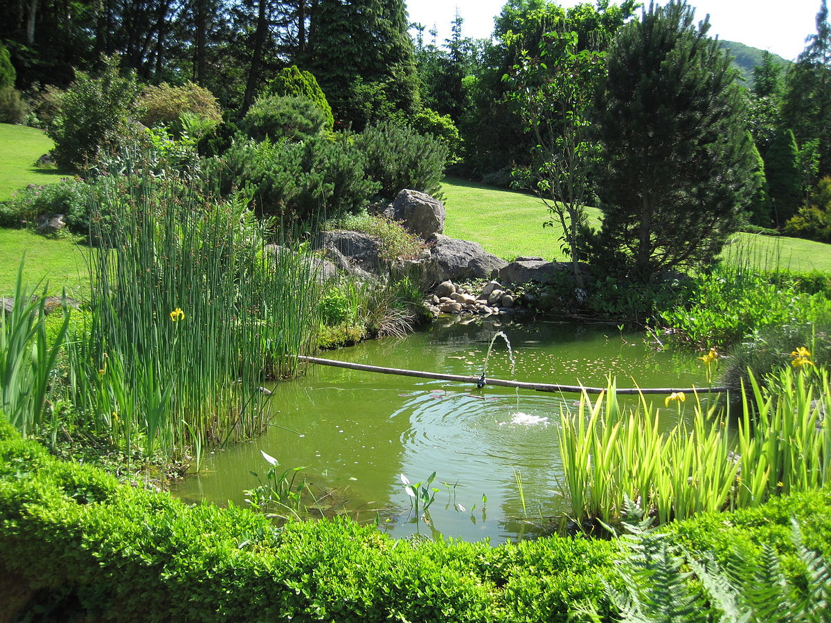 Bassin jardinage wikip dia for Photo bassin de jardin