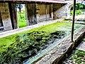 Bassin intérieur du lavoir du bas. (1).jpg