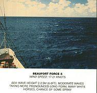 Scala Beaufort, forza 5