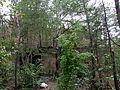 Beelitz Heilstätten -jha- 300437165288.jpeg