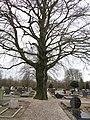 Begraafplaats Heelsum (31355894326).jpg