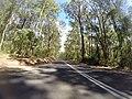 Benandarah NSW 2536, Australia - panoramio (19).jpg