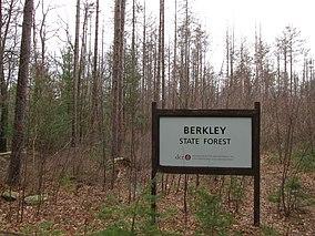 Berkley State Forest, Berkley MA.jpg