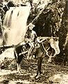 Bery Lytell, silent film actor (SAYRE 5708).jpg