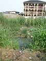 Bessengue Douala January 2013 01.JPG