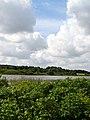 Bevoksning ved Vandkraftsøen - panoramio (1).jpg