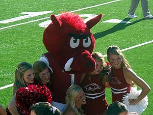 Big Red (University of Arkansas) - Big Red poses with Razorback cheerleaders, 2012