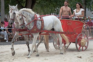 Chariot carriage using animals to provide rapid motive power