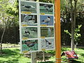 Birds Garden of Isfahan 22.JPG