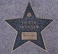 Birmingham Walk of Stars Frank Skinner.jpg