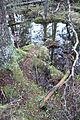 Blankvann Landskapsvernomraade by Finnerud IMG 0648.JPG