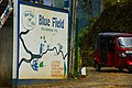 Bluefields Tea 03.jpg