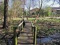 Boardwalk over marshy ground - geograph.org.uk - 1275507.jpg