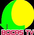 Bocas TV Logo 3D.png