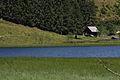 Bodensee-seewigtal1621.JPG