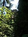 Bodenseeraum 2012 ii 129.jpg