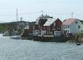 Bogøya - detail.PNG