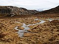 Boggy area above Glac Sheilich - geograph.org.uk - 751027.jpg