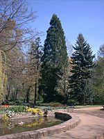 Botanic Garden Oliwa