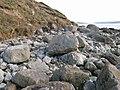 Bouldery shore - geograph.org.uk - 1705464.jpg