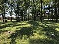 Boulton Cemetery in Columbia, Missouri in September 2019.jpg