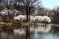 Bound Brook Park (13971719884).jpg