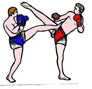 Front kick kick