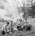 Boys of the Youth Service Volunteers take a break from clearing scrub at an agricultural camp at Nunney Catch in Somerset, 1943. D16330.jpg