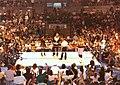 Bret Hart vs. Ted DiBiase - 1991-04-15 - 01.jpg