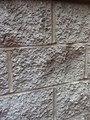 Bricks on wall St Louis, Mo, USA 26 April 2014 Bananasoldier.jpg