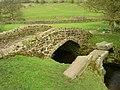 Bridges old and ... older - geograph.org.uk - 778808.jpg