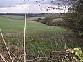 Bridleway north of Came Wood - geograph.org.uk - 621332.jpg